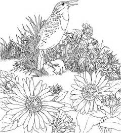 free coloring pages of and sunflower coloring pages bestofcoloring