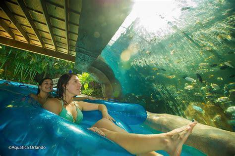 aquatica seaworld florida usa aquatica at seaworld orlando waterpark in orlando
