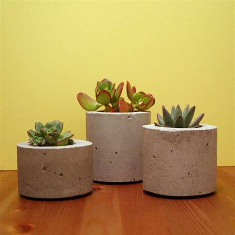 vaso per piante grasse vasi piante grasse piante grasse