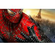 Spidrman  Spider Man Photo 34793168 Fanpop