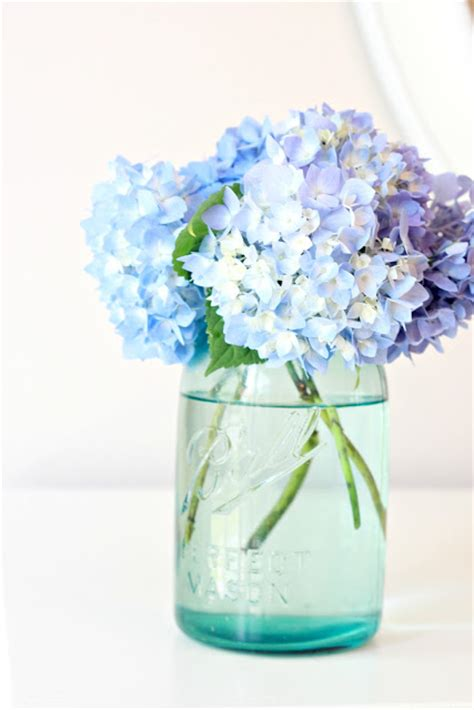 tip to keeping cut hydrangeas looking fresh love of family home