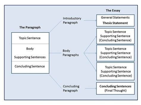 Structure Of Essay Writing by Academic Essay Writing Structure Chemistry Help