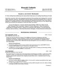 a sle of a resume vice president of sales resume