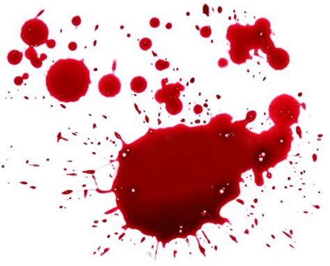 pattern evidence forensics blood year 9 forensic science