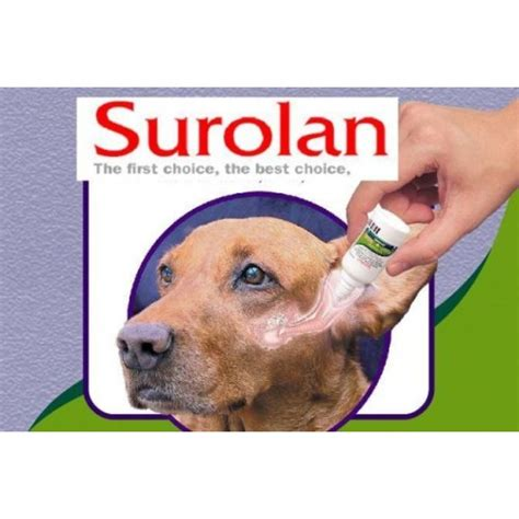 otitis externa in dogs surolan is used to treat otitis externa and dermatitis in dogs caused by yeasts fungi