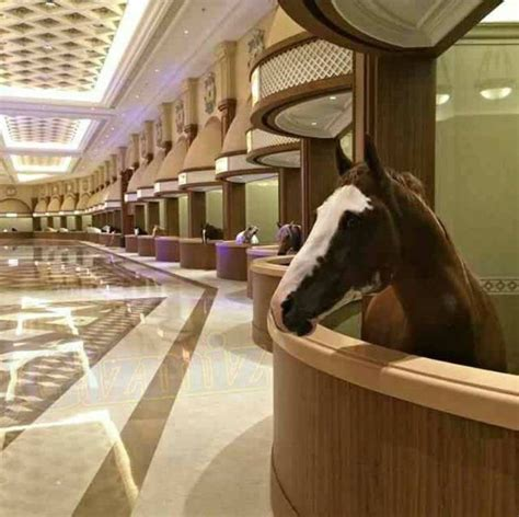 Home Interior Design For Dummies They Built A Luxury Marble Palace For Horses In China