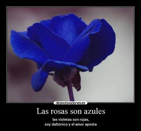 imagenes de rosas azules con frases de amor rosas azules con dedicatorias de amor imagui