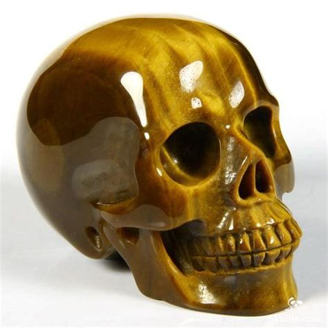 2 4 quot gold tiger eye carved skull realistic