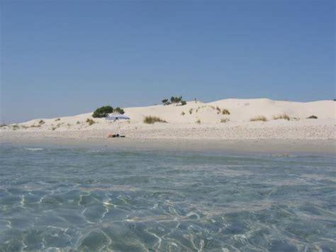 le dune porto pino le dune di porto pino foto di sardegna italia tripadvisor