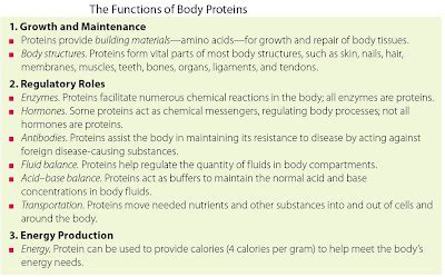 8 protein functions wisdom is to the mind what health is to the
