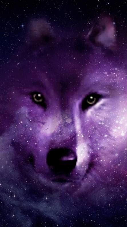 wolf ringtones  wallpapers   zedge