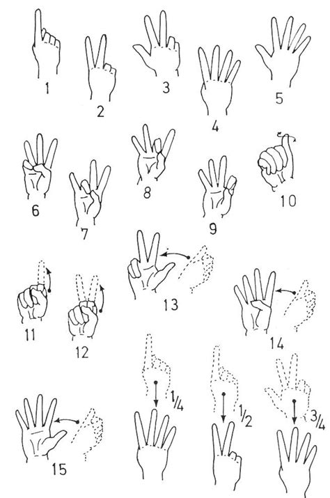 sign language numbers 1 30 printable asl number chart including exles of fractions asl