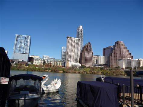 free boats in texas swan boat on lady bird lake in austin texas free photos
