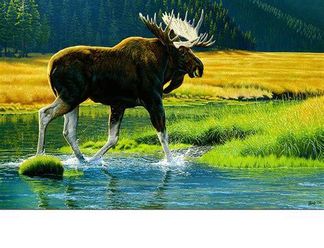 Moose Doormat by Indoor Outdoor Wetland Moose Insert Doormat 18 X 30