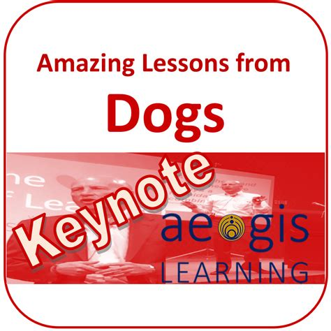 tim s home town stories lessons from a boy growing up in a genuine west town wyoming about being an entrepreneur happiness humor friendship honor and success books keynote amazing lessons from dogs aegis learning