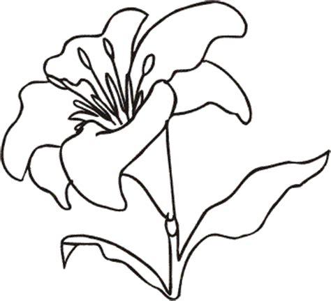 fiori disegnati da bambini fiori 23 disegni per bambini da colorare