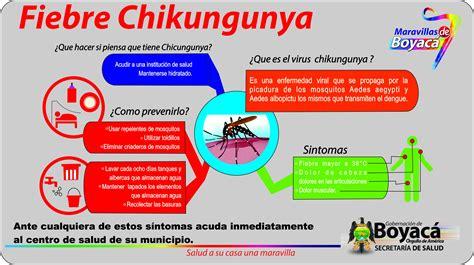 imagenes groseras sobre el chikungunya circular 278 de 2014 lineamientos para la vigilancia