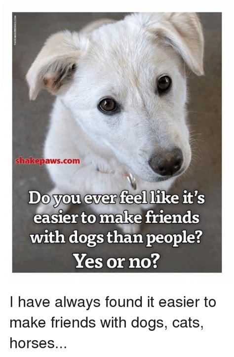 how to make dogs like you shakepawscom do you feel like easier to make friends