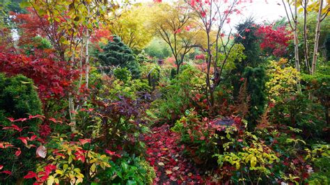 autumn garden four seasons garden the most beautiful home gardens in