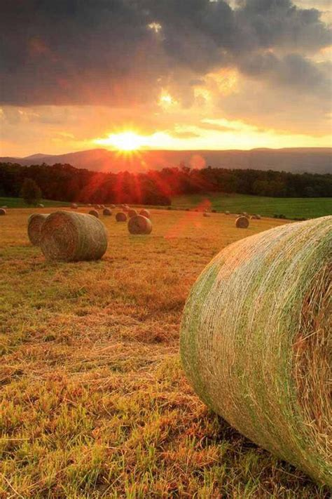 beautiful country scene things i love pinterest