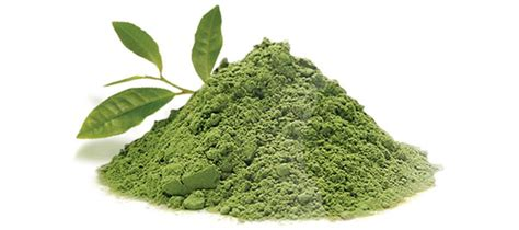 best green tea matcha matcha green tea powder review why you should be taking it