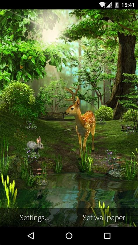 deer nature  wallpaper android apps  google play