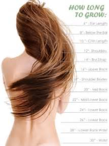 how to grow your hair 3 4 inches in a week hair growth chart mid back for sure sooon h a i r