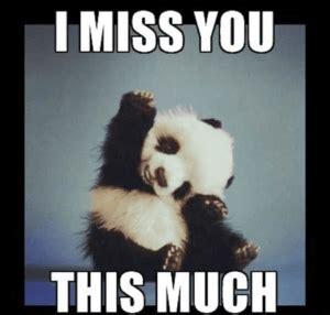 Miss U Meme - i miss you meme best list of funny i miss u ecards