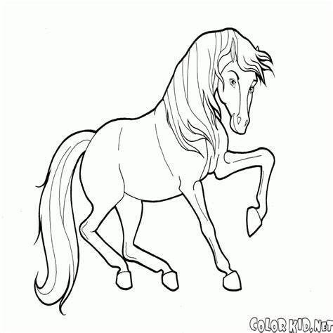 disegni di immagini cavalli da colorare