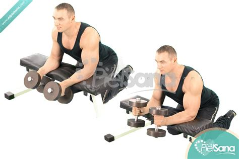 reverse wrist curl over bench neutral dumbbell wrist curl over bench