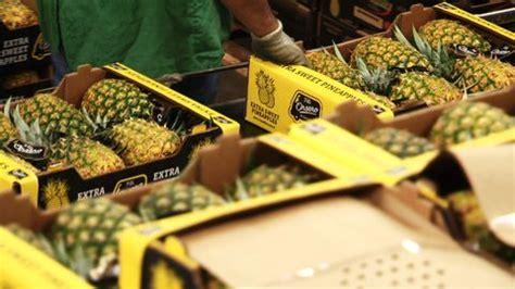 alimenti contro il colesterolo alimenti contro il colesterolo cattivo l ananas