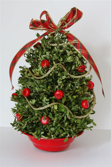 boxwood tabletop christmas tree tree worldwide gallery
