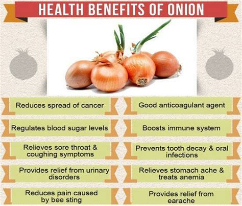 benefits of onion for hair health benefits of onion