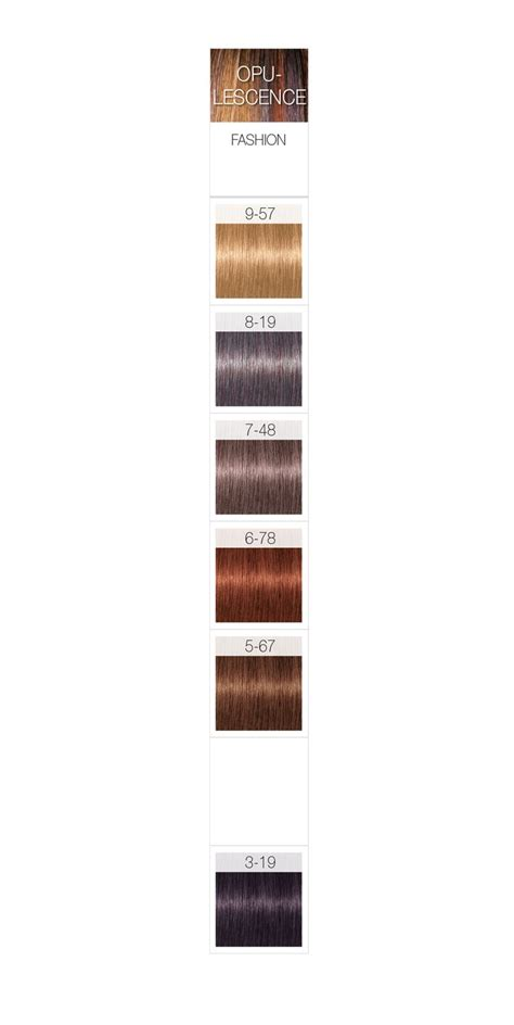 schwarzkopf color igora royal hair color chart om hair of igora hair dye