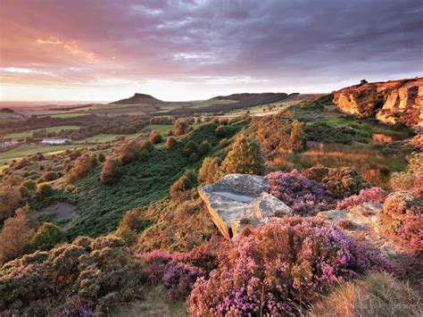 Landscape Photography York Moors Landscape Photographer S Study Of York Moors And