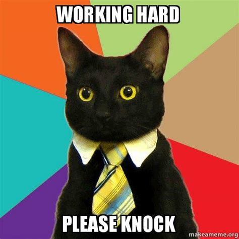 Working Cat Meme - business cat meme