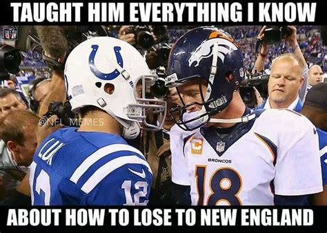 Broncos Patriots Meme - 32 best images about buffalo bills memes on pinterest