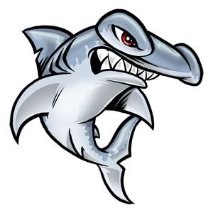 new jersey hammerheads logo under fire for copyright