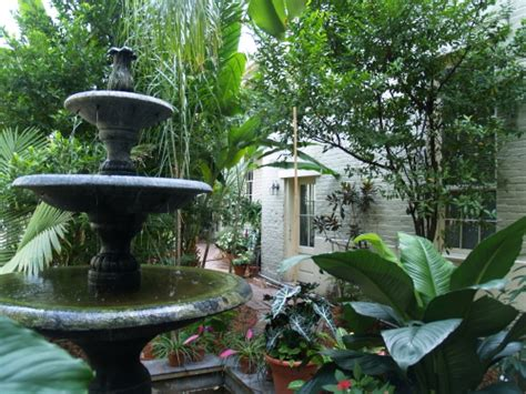 New Orleans Gardens by Of Nesting Gardening In Dreams Charleston And Nola