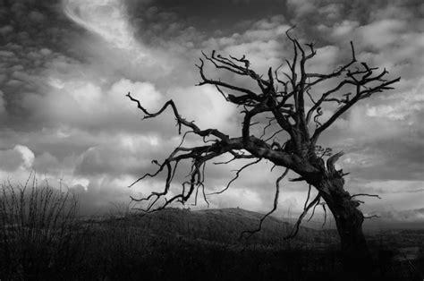 pictures gambar hitam putih pemandangan drawings art