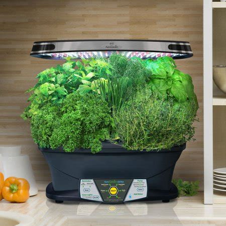 miracle gro aerogarden extra led  gourmet herb seed