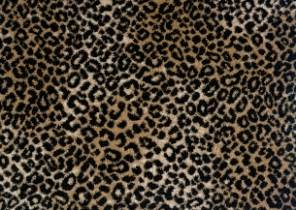 Jaguar Carpet Buy Lake Jaguar By Stanton Royaltron Fiber Carpets In Dalton