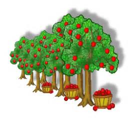 apple orchard apple orchard clipart 101 clip art