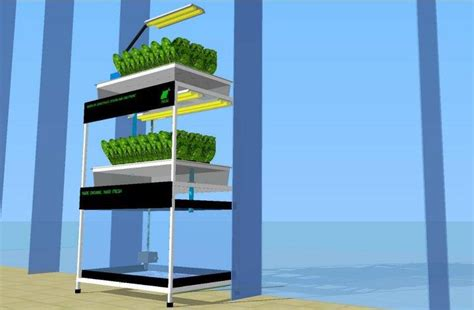 design for aquaponic knowing aquaponics the builder