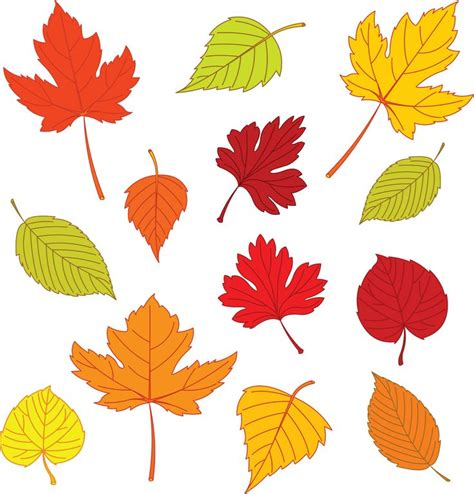 free printable fall leaves 17 best leaf templates images on pinterest leaf template