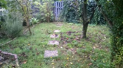 rifacimento giardino rifacimento giardino irrigazione aiuola a
