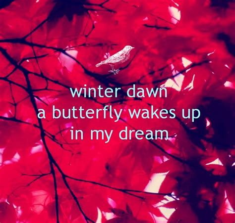 waking up in winter in search of what really matters at midlife books haiku poem winter a butterfly wakes up in my
