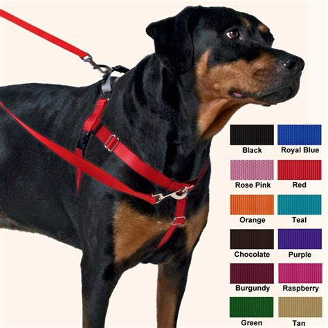 best no pull harness easy walk harness black get free image about wiring diagram