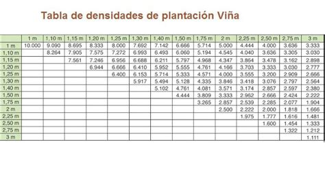 cuanto mide una tarea de tierra y cuanto mide una 191 cu 225 ntas plantas de vid caben en una hect 225 rea densidad de