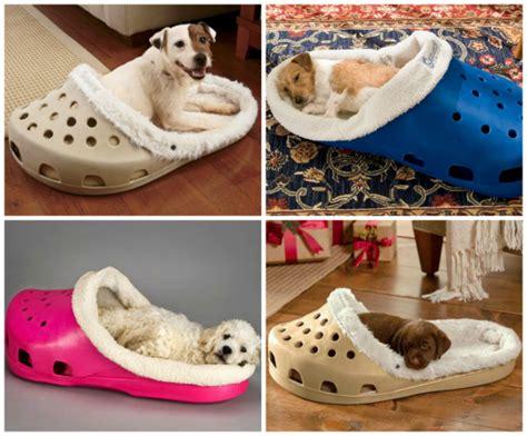 camas para perros pequeños 11 regalos originales para mascotas